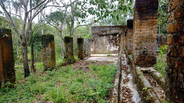 ruinas no meio do mato