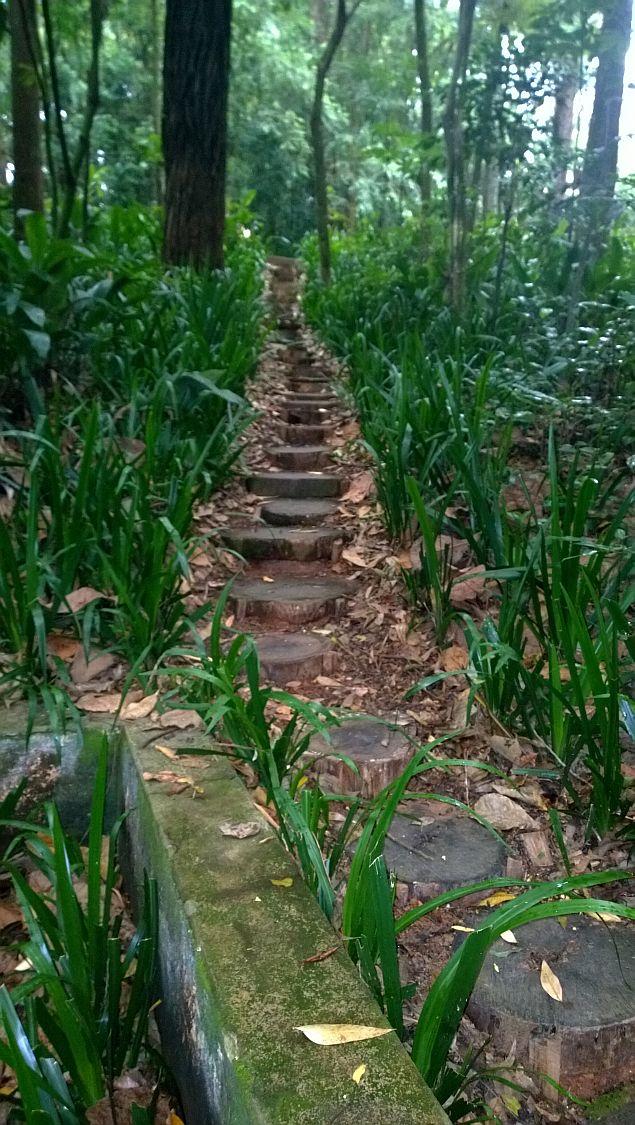 4 escada de tocos